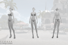 Swimsuit Contest Templates 3