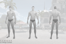Swimsuit Contest Templates 4